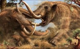 Dạo bờ sông, phát hiện tàn tích quái thú 10.000 năm tuổi
