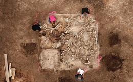 Xây trại gà, lộ ra mộ cổ rùng rợn của 6 người vợ hoàng tử