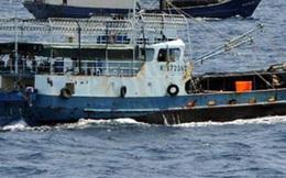 Chủ 1 tàu cá bị đề nghị phạt 1.3 tỉ đồng