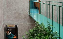 Lạ mắt với căn nhà có cầu thang xanh ngắt, bao phủ bởi khu vườn nhiệt đới