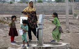 Vì sao nhà nào trong một ngôi làng Ấn Độ cũng có người ốm đau?
