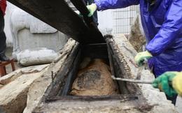 Bí mật trong cỗ quan tài thứ 3: Cạy nắp thành công, đội khảo cổ bất ngờ khi nhìn bên trong