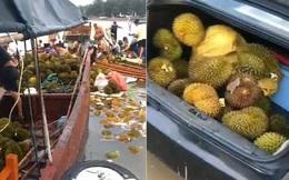 Trung Quốc: Hơn 500 người ngộ độc sau khi ăn sầu riêng ngâm nước biển