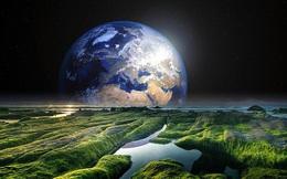Sự sống chỉ có trên Trái đất hay ở khắp mọi nơi? Tìm hiểu học thuyết 'bồ công anh' để có thêm góc nhìn mới thú vị