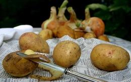 Lợi ích sức khoẻ không ngờ của vỏ khoai tây