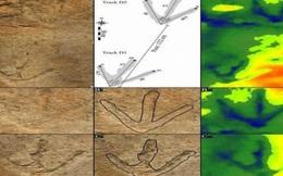 Nghi vấn loài khủng long vẫn chưa tuyệt chủng? - Kỳ 2: Những vụ chứng kiến sự xuất hiện của khủng long