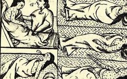 Dịch bệnh bí ẩn xoá sổ 80% dân số Mexico 500 năm trước