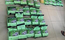 Phá đường dây ma túy ngụy trang trong thùng trái cây từ Campuchia về TP HCM, thu giữ gần 50kg ma túy