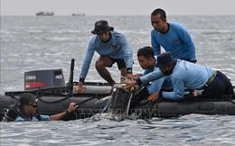 Xác định được vị trí của 2 hộp đenmáy bay rơi tại Indonesia