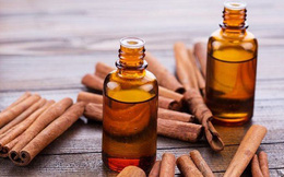 Từ việc ngộ độc tinh dầu quế: Chuyên gia chống độc lưu ý  cách dùng tinh dầu, tránh sơ ý gây tổn hại sức khoẻ