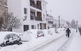 Tây Ban Nha vật lộn ứng phó với bão tuyết mạnh nhất trong nhiều thập kỷ qua