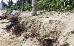 Bờ biển Đà Nẵng tiếp tục sạt lở
