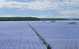 6 dự án điện mặt trời bị Hải quan phạt hơn 50 tỷ đồng
