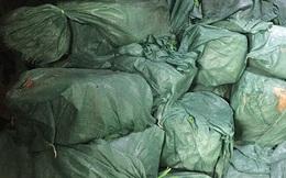 Phát hiện hơn 5,5 tấn thịt gia súc, gia cầm, thuỷ sản... không rõ nguồn gốc, xuất xứ