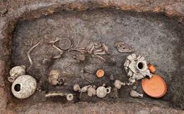 Đào sân bay, phát hiện hài cốt 2.000 năm chôn cùng... bàn tiệc BBQ