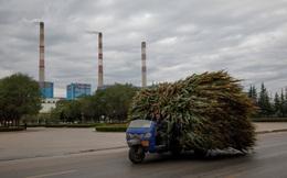 Trung Quốc xóa đói giảm nghèo cực kỳ tốn kém với công việc, nhà ở và bò: Kẻ tung hô, người nức nở khóc than