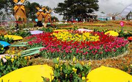 Có gì đặc sắc ở lễ hội hoa kỷ lục hơn 120 triệu Euro tại Quảng Bình?