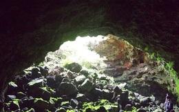 Lần theo vết máu đến một cái hang, cảnh tượng đập vào mắt khiến người đàn ông chết điếng