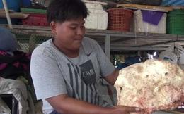 Khối long diên hương quý hiếm giá hàng tỷ đồng hóa ra là chất thải của con vật khổng lồ này