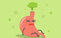 Nếu không ợ hơi, dạ dày con người có phát nổ không?