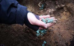 Phát hiện kho báu tiền vàng cổ ở trang trại châu Âu