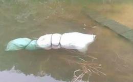 Phát hiện thi thể người phụ nữ buộc trong bao tải nổi trên mặt hồ