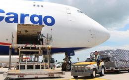 Các công ty logistics hàng không sống khỏe, lãi thậm chí về sát đỉnh trước đại dịch khi các hãng hàng không vẫn lỗ