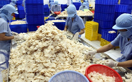 Thủy sản Vĩnh Hoàn hoàn tất mua lại 49,9% cổ phần bánh phồng tôm Sa Giang