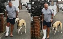 """Chi hơn 9 triệu đưa chó cưng đi khám, người đàn ông bất ngờ biết được sự thực """"cười ra nước mắt"""""""