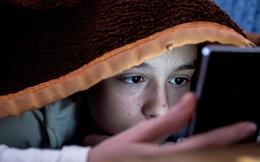 3 nguy cơ tiềm ẩn khi duyệt 'trang web không lành mạnh' trên smartphone, giờ biết cũng chưa muộn