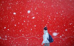 7 ngày qua ảnh: Người phụ nữ đi dưới mưa tuyết trắng xóa ở Nga