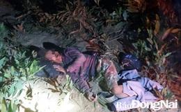 Người đàn ông nằm bất tỉnh trong rừng keo với nhiều vết thương: Hiện trường có nhiều dấu chân voi