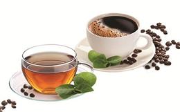 Uống trà hay uống cà phê tốt hơn? Chuyên gia lưu ý cách uống trà và cà phê hại sức khoẻ