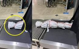 Sân bay nháo nhác vì gói hàng kinh dị trên băng chuyền, sự thật bên trong khiến tất cả bất ngờ