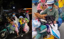 Bí thư Cà Mau nói về việc tiêu hủy 15 con chó: 'Dù anh em có xử lý nóng vội thì mục đích chỉ muốn bảo vệ người dân'