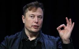 Tesla 'mơ' lớn bán tự lái cho hãng khác cùng dùng – Giới quan sát 'cười khẩy', lắc đầu ngao ngán