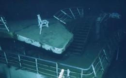 """Hoảng hồn phát hiện sinh vật khổng lồ, bí ẩn """"canh"""" xác tàu đắm"""