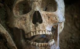 Khám phá khảo cổ học viết lại lịch sử, chuyên gia chỉ thốt lên một câu khiến tất cả mọi người 'đứng hình'