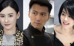 Triệu Vy bất ngờ hỏi Vương Phi có điểm nào thua kém Trương Bá Chi, Tạ Đình Phong đáp trả ra sao?