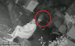 Hóng gió ngoài sân, người phụ nữ bị báo tấn công, cách phản ứng của cô khiến con vật cũng phải sốc