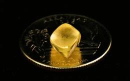 Đi dạo trong công viên, người phụ nữ bỗng 'đá' phải viên kim cương cực đẹp - 'Đút túi' ngay gần 350 triệu đồng