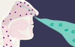 Chứng mất khứu giác, vị giác ở bệnh nhân COVID-19: Tự khỏi hay cần điều trị?