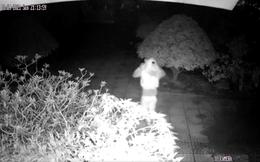 CLIP: Truy tìm kẻ xông vào nhà đâm vợ chồng già rồi cướp tài sản