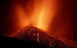Phun trào núi lửa mở đường cho khủng long trở thành loài thống trị thế giới động vật cổ đại