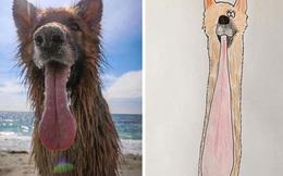 19 tác phẩm vẽ thú cưng xấu tới mức thành phản ứng ngược, ai xem xong cũng muốn đặt một bức treo chơi