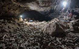 Phát hiện sọ người trong hang động núi lửa, hé lộ tính phàm ăn của loài linh cẩu