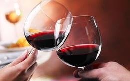 Hỏi nhanh - Đáp gọn: Tại sao chúng ta thường chúc rượu vào ngày Tết?
