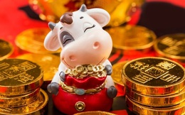 10 lưu ý để chiêu tài, hút lộc trong năm mới Tân Sửu 2021: Điều số 7 nhiều gia đình hay quên