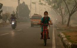 Ô nhiễm không khí do đốt nhiên liệu hóa thạch gây ra cái chết cho 8,7 triệu người trong năm 2018?