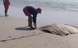 Đang tắm biển, du khách hốt hoảng la hét vì thấy một thi thể trên biển